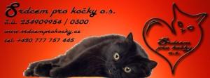 srdcem pro kočky